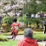 Yuko Kaseki - Japanese Festival @ Japanese Garden The Hague