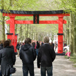 Japanese Festival @ Japanese Garden The Hague